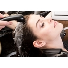 buy | Hair Salon In Collier County |