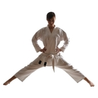 buy | Aikido Japanese Martial Art Business In King County |