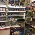 comprar | San Petersburgo | Pet shop-zoosalon-zoo-pupil en San Petersburgo | RU826126